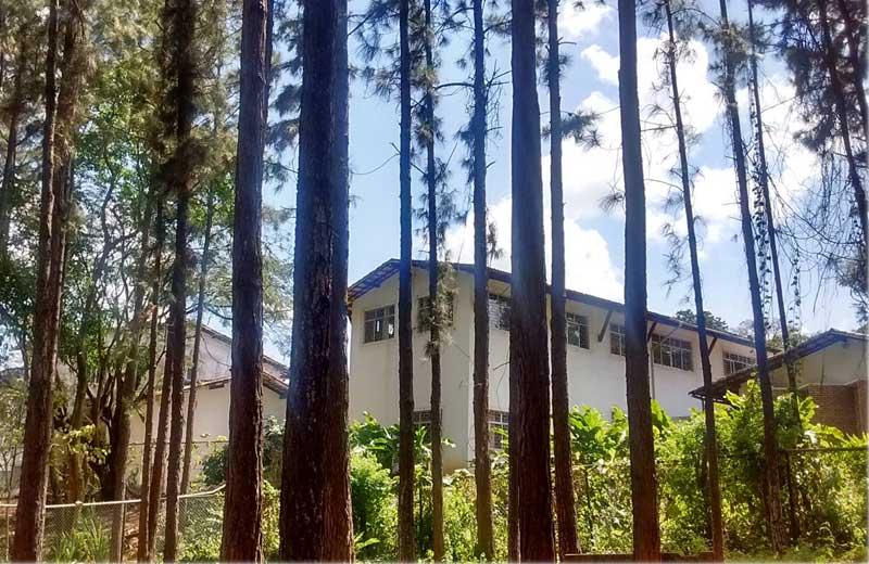 Mosteiro de Salvador - Foto arquivo pessoal
