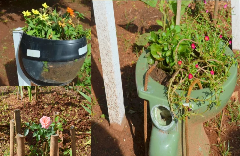 Capacete e vaso sanitário viram vasos de flores/Foto: Carol Giantomaso/G1