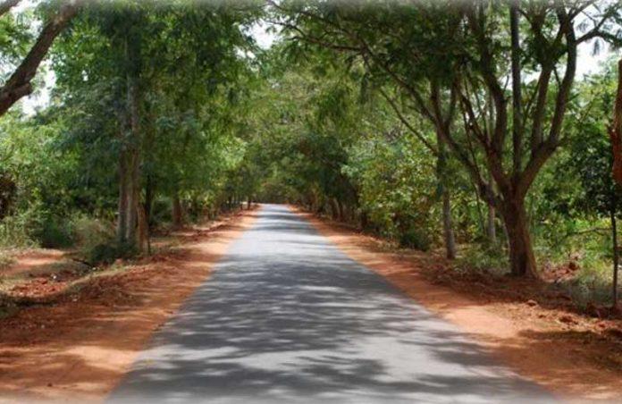 Foto: reprodução / Auroville|Auroville tem formato de uma galáxia - Foto: divulgação|