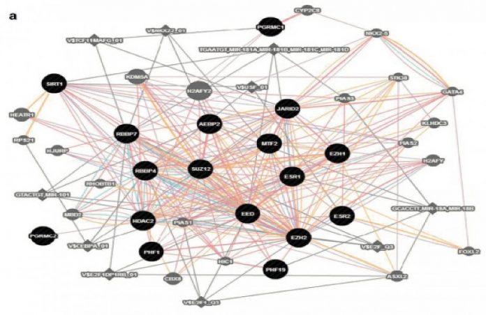 Gens causadores da TPMD - Foto: NIH