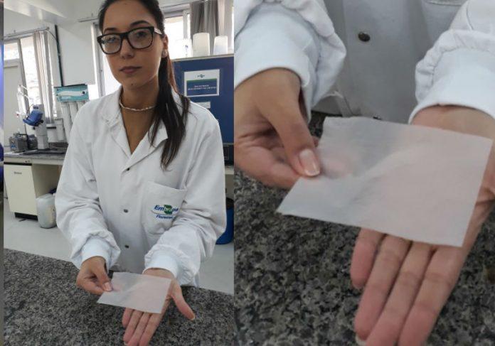 Francine Ceccon Claro mostra curativo de celulose vegetal desenvolvido na Embrapa Florestas