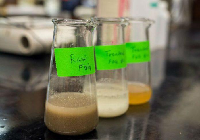 A gordura em vários estágios de tratamento Foto: UBC