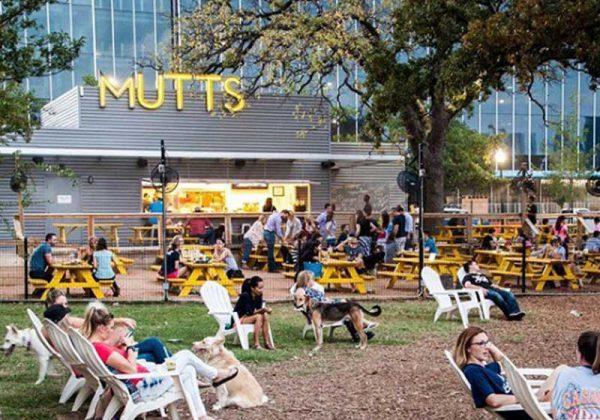 Mutts Canine Cantina - Foto: reprodução Instagram