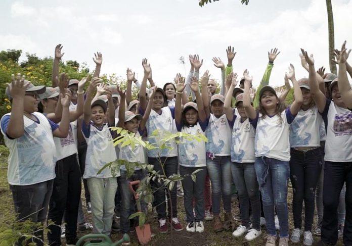 Uma das turmas que plantaram árvores no Polo Jeep em Goiana/PE - Foto: FCA/divulgação