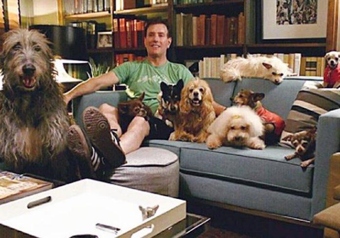 Steve Greig e seus cães - Foto: reprodução / Instagram