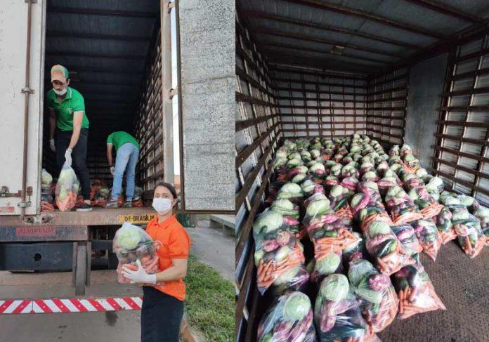 Entrega de cestas verdes - Fotos: arquivo pessoal|Cestas verdes - Foto: arquivo pessoal|