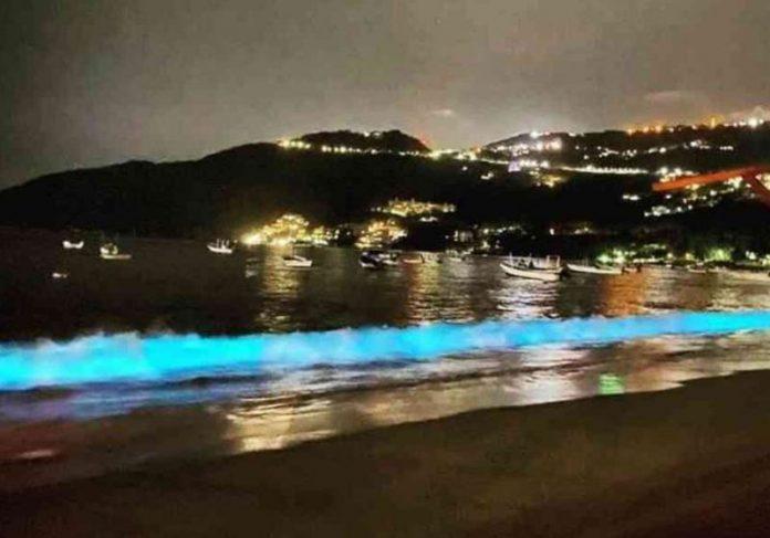 Ondas iluminadas no México - Foto: reprodução / FideTur Acapulco/Twitter