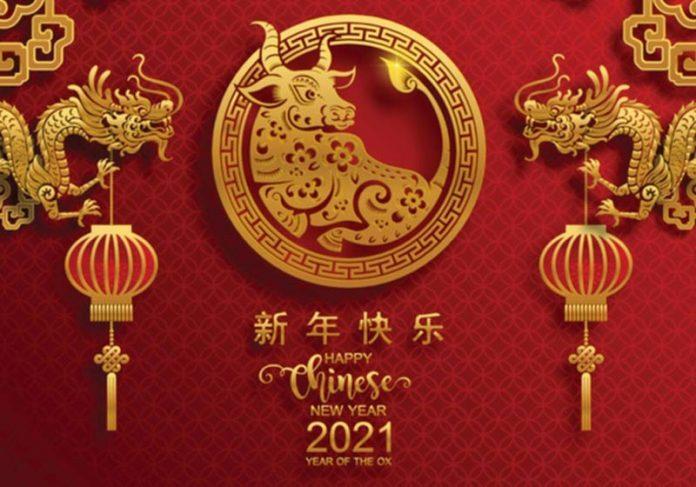 Ano do Boi no Horóscopo Chinês - Foto: reprodução