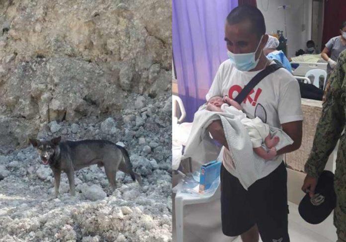 Blacky, o motociclista e o bebê - Fotos: Sibonga WCPD's Facebook