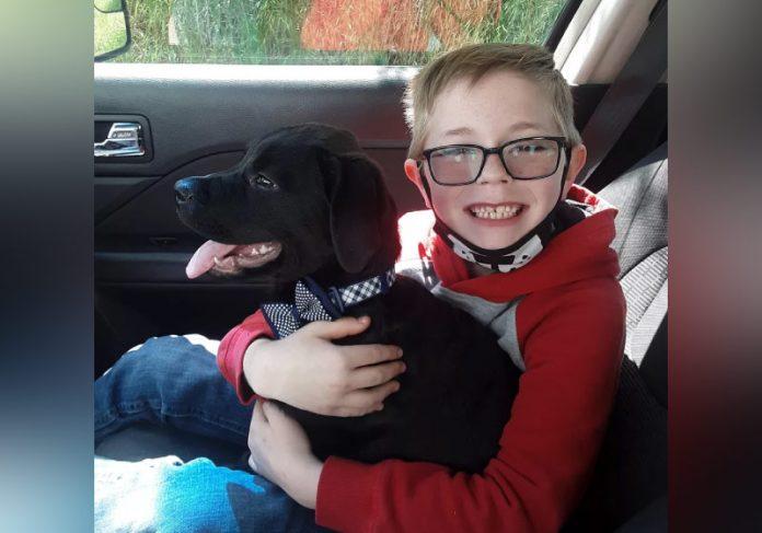 Bryson queria salvar cão, diagnosticado com doença contagiosa - Foto: arquivo pessoal