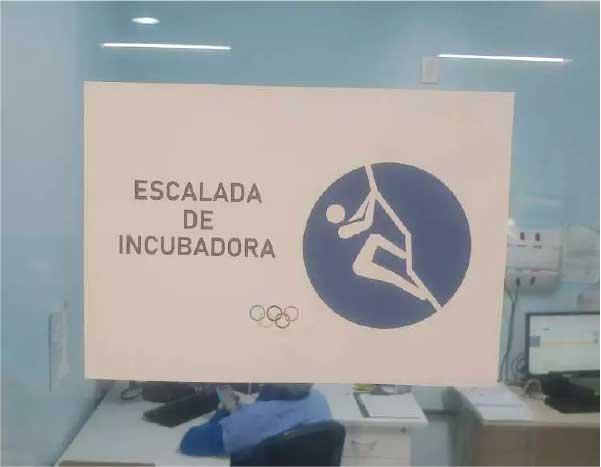 Olimpíadas neonatal - Foto: reprodução