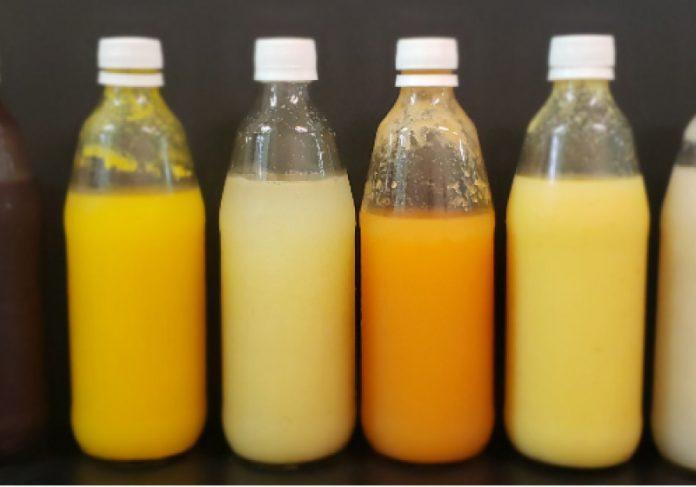 Primeiro probiótico de frutos é uma alternativa para intolerantes à lactose e veganos - Foto: UFC