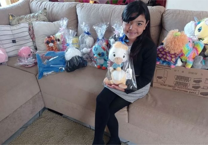 Menina conseguiu pegar 58 pelúcias e, incentivada pelo pai, doou todos para crianças carentes - Foto: arquivo pessoal