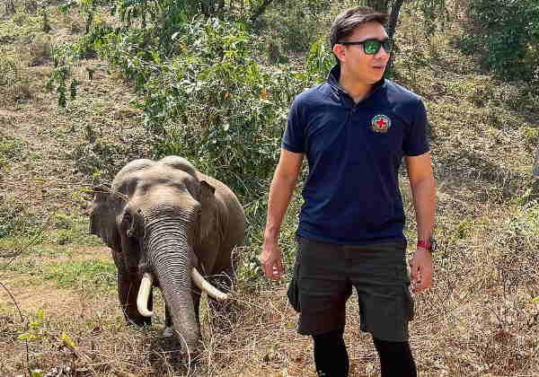 Plai esta à beira da morte e foi levado para um santuário onde se recuperou Fotos: Pattarapol Maneeon