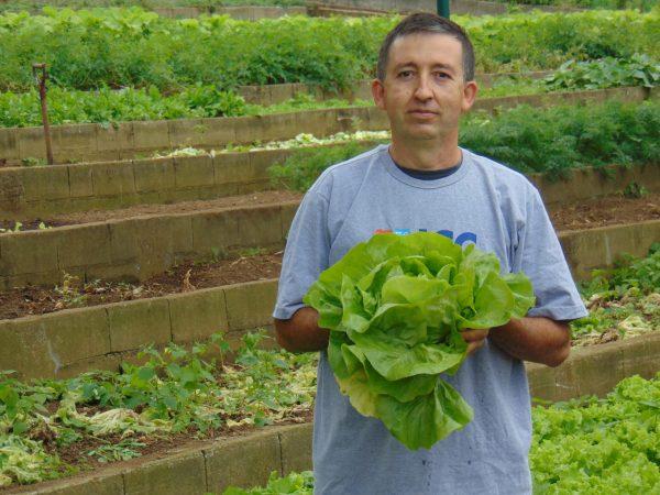Cleber cuida da horta há 20 anos - Foto: divulgação
