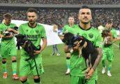 Jogadores da Romênia entram em campo com cães abandonados para incentivar a adoção - Foto: reprodução
