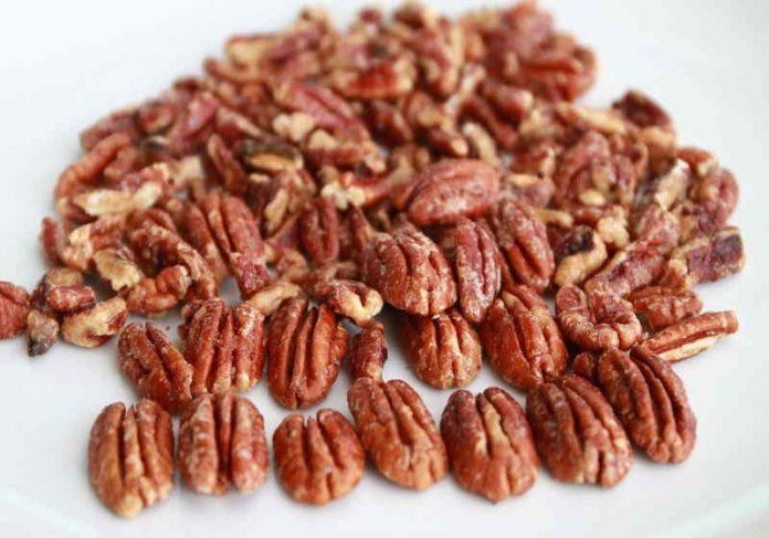 A noz-pecã, originária da América do Norte, reduz níveis de colesterol, descobrem cientistas - Foto: Pixabay