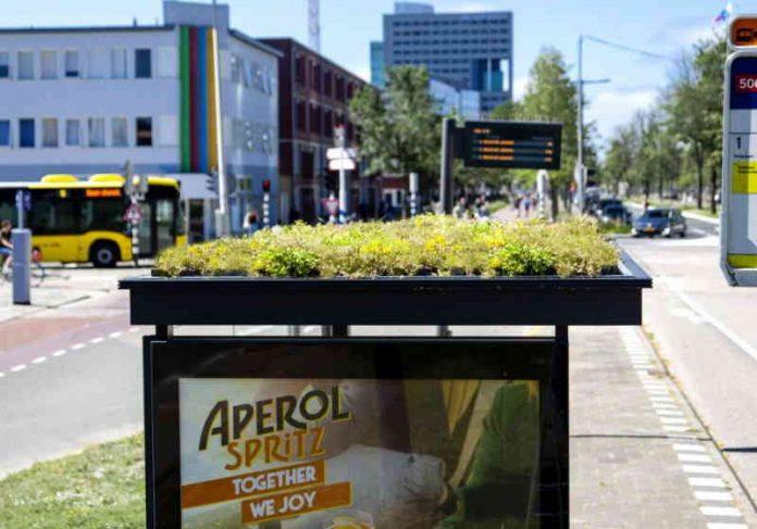 A cidade de Utresh, na Holanda, está transformando os pontos de ônibus em locais de polinização para abelhas Foto: Divulgação