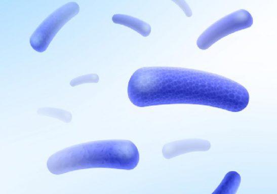 O teste brasileiro permite a detecção da hanseníase mesmo com poucos bacilos - Foto: macrovector / Freepik