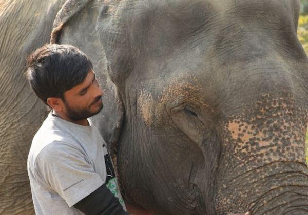Fotos: Wildlife SOS