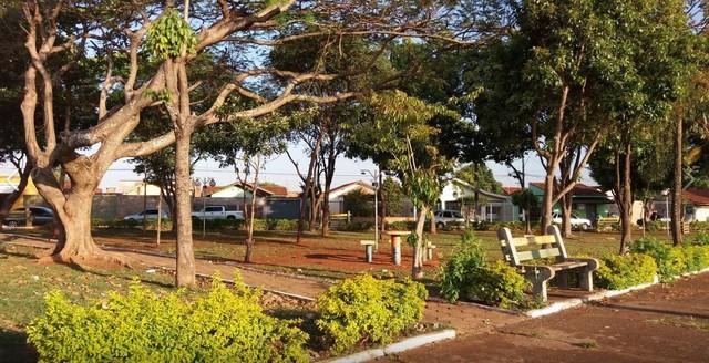 Praça de de Macatuba arborizada com projeto - Foto: arquivo pessoal