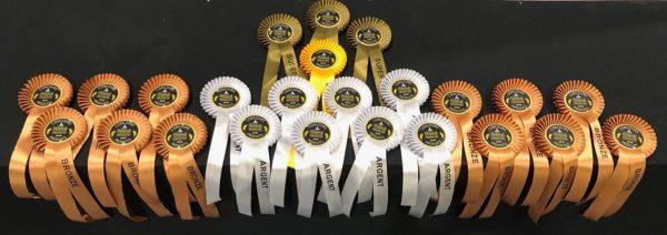 Serra da Canastra, 24 medalhas - Foto: Divulgação Aprocan