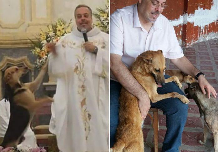Foto: reprodução|Foto: reprodução|Foto: Padre João Paulo|O padre no veterinário com um dos animais Foto: Padre João Paulo|Cão quietinho na missa Foto: reprodução