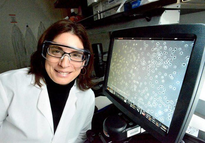 Cientista Daniela Kaufer - Foto: Divulgação: Berkeley University