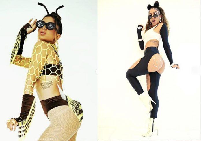 Anitta defende animais em extinção no Carnaval - Fotos: reprodução Instagram