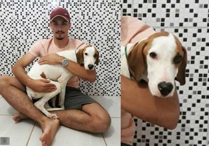 Lucas e o cãozinho adotado - Foto: reprodução / Instagram