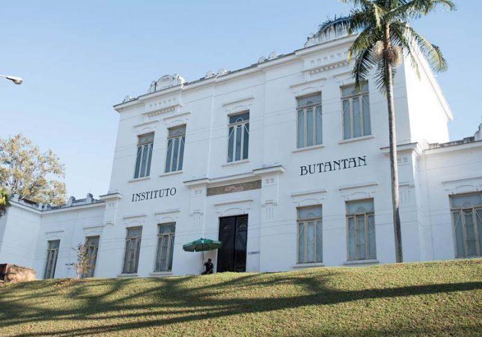 Instituto Butantan/SP - Foto: arianepergon / Pixabay