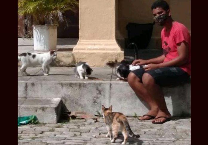 Jonathan com gatos no cemitério - Foto: aqr