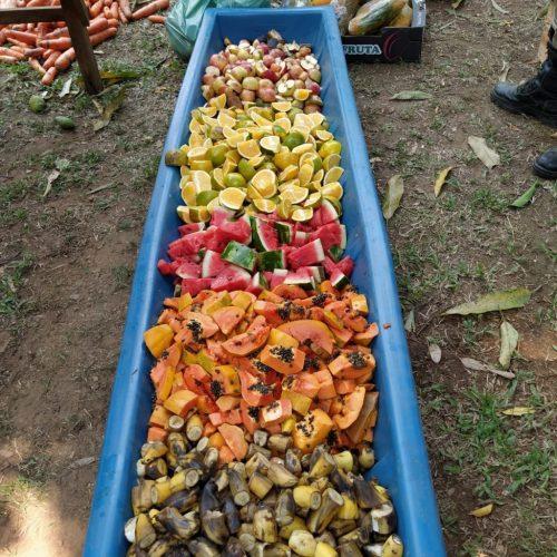Alimentos levados ao Pantanal - Foto: divulgação
