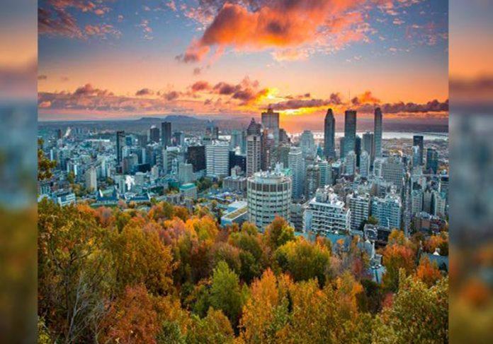 Vista de Montreal - Foto: Tourisme Montréal/Divulgação