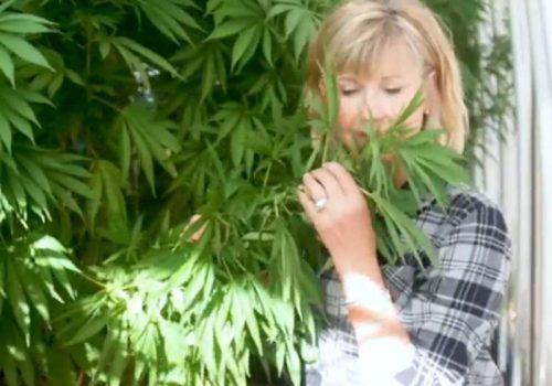 Olivia Newton-John na plantação de maconha - Foto: reprodução / SurvivorNet
