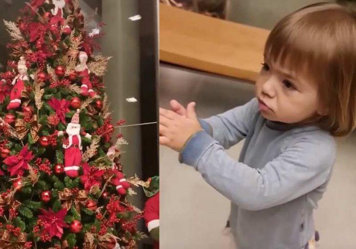 Zoe encantada com a árvore de Natal da família - Fotos: Instagram