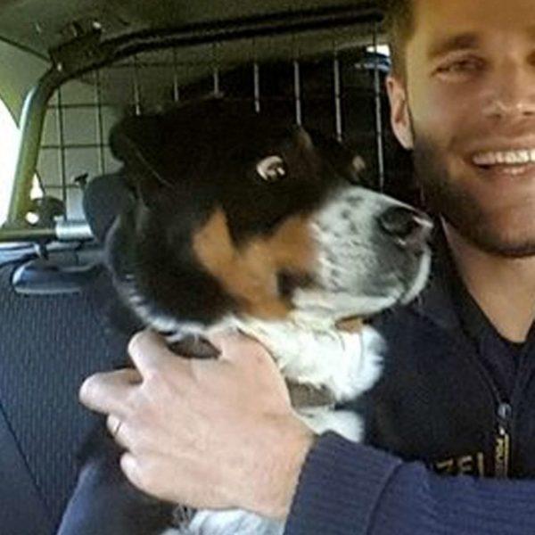 Close do espanto do cão - Foto: Polícia da Franconia Central