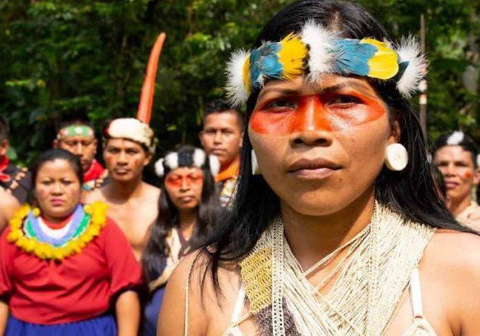 Nemonte Nenquimo Foto: Jeronimo Zuñiga, Amazon Frontlines/ Prêmio Ambiental Goldman