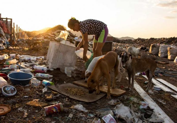 Dona Margareth alimentando cães no lixão - Foto: Acácio Medeiros