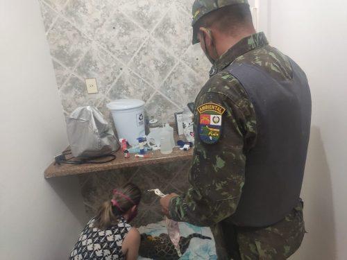 Filhote resgatado - Foto: reprodução /MT+