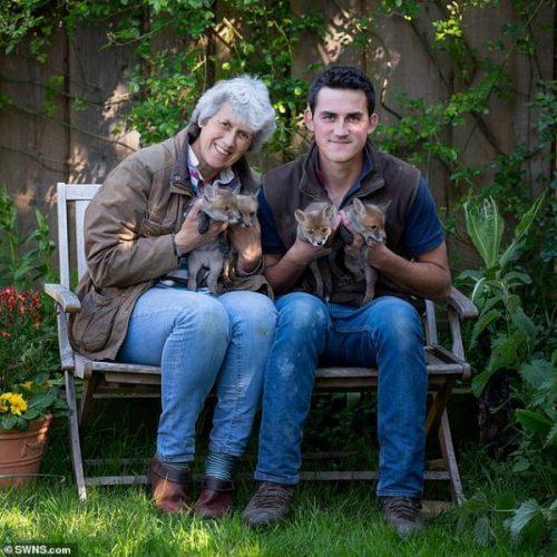 Chris, a mãe e os filhotes - Foto: SWNS