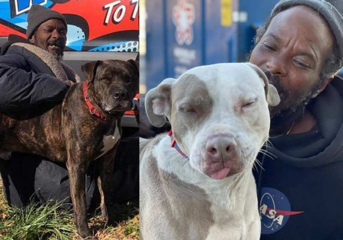 Keith Walker e os animais - Fotos: Gracie Hamlin / W-Underdogs