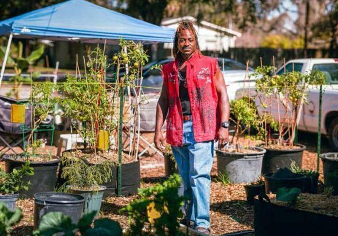 Michael e a horta no quintal - Foto: Rádio WMNF