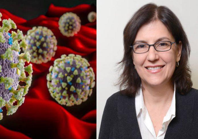 Beatriz Fontoura, Ph.D. Foto: UT Southwestern