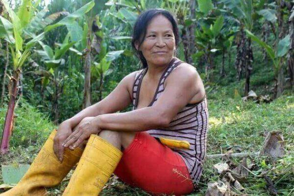 indígena da nação Separa