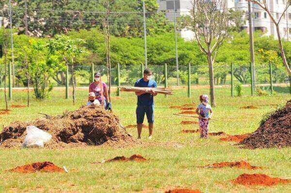 Mais de 30 espécies de plantas serão cultivadas no local - Foto: Joel Rodrigues | Agência Brasília