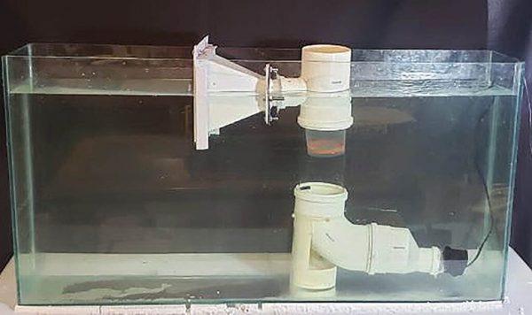 Filtragem de microplásticos em aquário simula resultados em uma ETA - Foto: Arquivo Pessoal