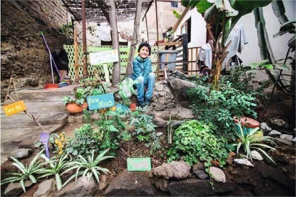 Uma TiNi no quintal – Foto: Divulgação Ania