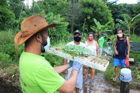 """O """"Quem Planta Colhe"""", revitaliza os canteiros do Jardim Botânico. - Foto: Prefeitura de Santos"""