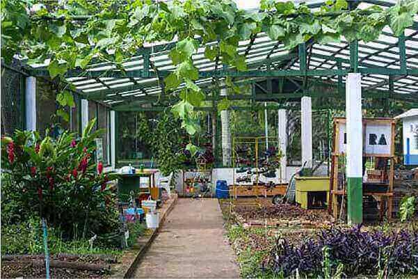 Centro de Aprendizagem em Compostagem e Agricultura Urbana que fica dentro do Jardim Botânico de Santos. - Foto: Prefeitura de Santos